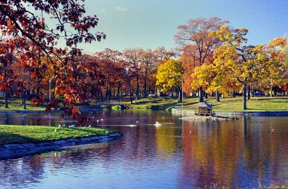 Deering Oaks Park