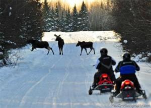 Aroostook County Snowmobile Trail