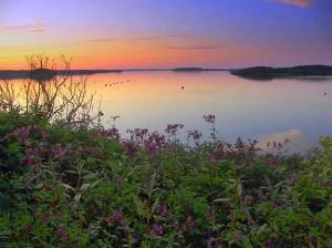 Cobscook Bay, Washington County.