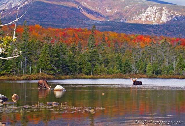 Aroostook County Maine Photos @ eTravelMaine