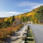 Autumn Drive on the Acadia Park Loop