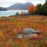 Autumn-at-Jordan-Pond---Acadia-National-park