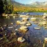 Autumn-at-Sandy-River-Stream---Baxter-State-Park