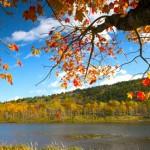Autumn-in-Acadia