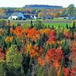 Autumn-in-Presque-Isle