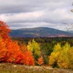 Autumn in Rangeley