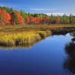 Baxter-State-Park---Fall-Foliage