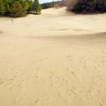 Desert-of-Maine---Freeport-Maine