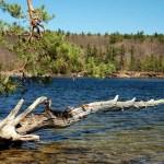 Lake-Auburn---Lewiston-Auburn-Maine