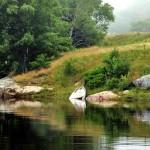 MidCoast-Maine-Tidal-Pond