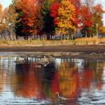 Sebasticook-Lake