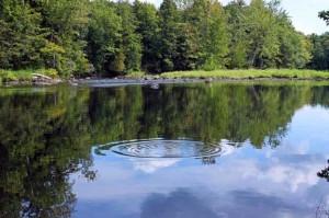 Sebasticook River Maine