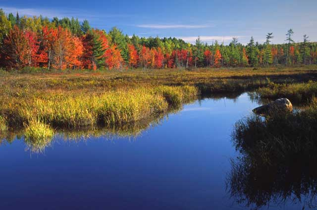 Limos For Sale >> Maine Fall Foliage Photos @ eTravelMaine